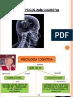 Psicologia Cognitiva-Enfoques Agosto_18