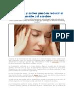 Depresión_y_estrés_pueden_reducir_el_tamaño_del_cerebro