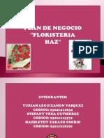 Floristeria HAZ - Plan de Negocio