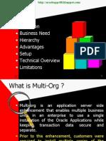 1.Multi-Org