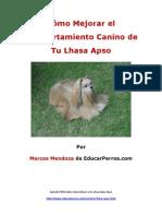 Cómo Mejorar el Comportamiento Canino de tu Lhasa Apso