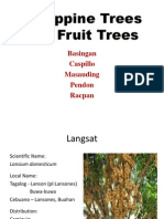 History Trees