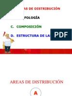 YACIMIENTOS - AREAS DE DISTRIBUCIÓN - morfologia - composicion - estructuras de las menas.