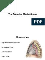 The Superior Mediastinum E-learning
