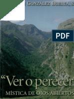Gonzalez Buelta, Benjamin - Ver o Perecer