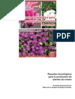 Paquetes Tecnologicos Para La Produccion de Plantas de Ornato
