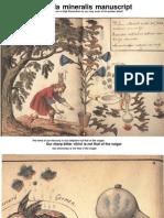 Cabala Mineralis Manuscript (Book1)