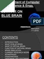30928464 My Blue Brain Ppt