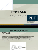 Phytase ppt