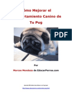 Como Mejorar el Comportamiento Canino de tu Pug