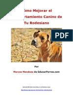Como Mejorar el Comportamiento Canino de tu Rodesiano