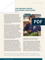Understanding how pathogen-specific, disease-resistance proteins protect plants