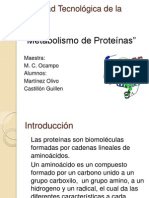 Metabolismo de Proteinas