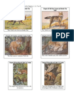 Burgess Animal Book Illustrations Pt 3