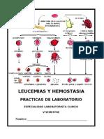 Cuadernillo Leucemias y Hemostasia