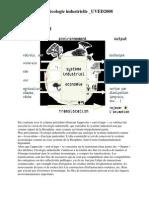 Approche Ecologie Industrielle _présentation UVED 2008