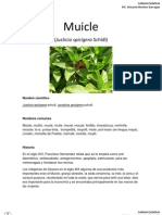 Muicle (monografia)