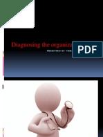 Diagnosing Organisations Presentation