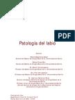 Patologia Del Labio