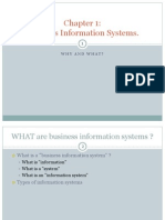 2. C1-Information Systems