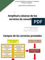 Amplitud y alcance de los servicios de consultoría