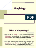 23672604-Morpholog-y