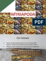 Myriapoda