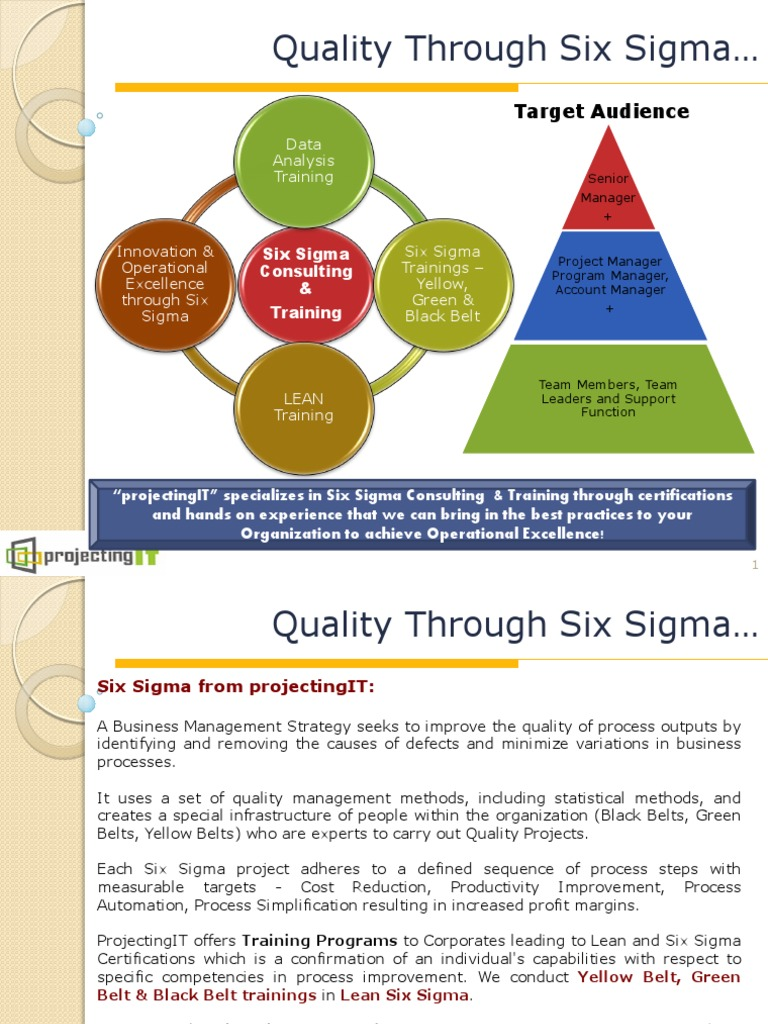 Lean Six Sigma Training Course Six Sigma Lean Manufacturing