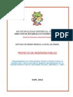 PIP - Mejoramiento de La Produccion y Promocion de Artesania en El Distrito de Supe.doc Rec Ecg 20.98.12
