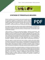 Grenelle Gouvernance _synthèse