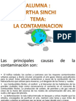 Contaminación Ambiental BERTHA SINCHI