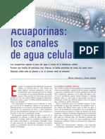 200612 - Acuaporinas