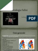 Tetralogie Bun