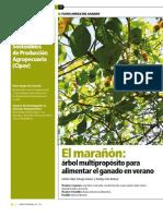 MARAÑON_EN_GANADERIA