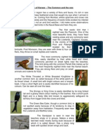 Birds of Karwar