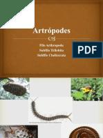 ARTRÓPODES_Quelicerados e Trilobitas