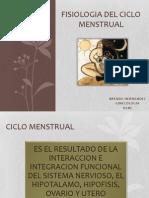 Fisiologia Del Ciclo Menstrual