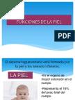 Funciones de La Piel