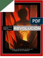 Revolución/Re-evolución