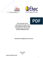 TCC PROCESSO DE FERMENTAÇÃO ALCOÓLICA