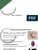 Sexo y Cognicion y Cognicion y Emocion