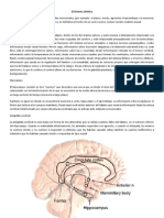 Neurofisiologia de Las Emociones