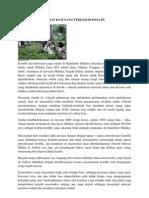 10 Pelanggaran Ham Di Indonesia