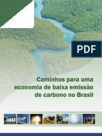 Caminhos Para Uma Economia de Baixa Emissao de Carbono No Brasil