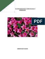 Biodescodificacion y Embarazo