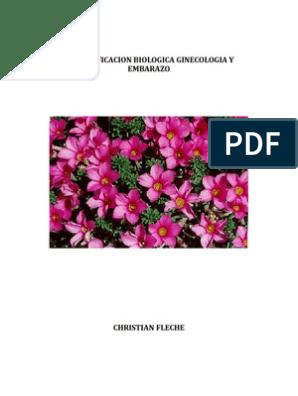 Biodescodificacion Y Embarazo Hormona Luteinizante útero