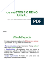 Os Insetos e o Reino Animal