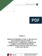 Estudio Ambiental Anexo 4 Tdr Para Estudios Para Obtener Cers
