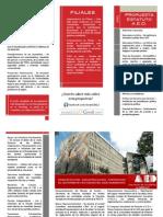 Panfleto Informativo Propuesta Estatuto Orgánico 2012