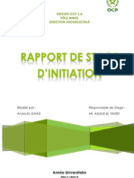 Rapport Stage OCP Group